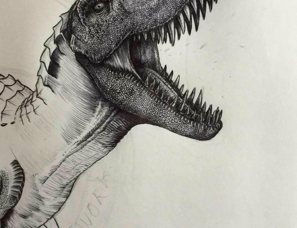 Rabbit Dinosaur Drawing